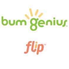 BUMGENIUS FLIP